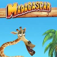 Madagaskar - Melman die Giraffe
